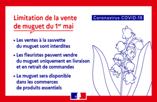 Covid-19 : dispositions relatives à la vente de muguet