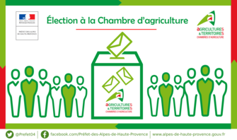 BANNIERE - TWITTER - Election Chambre Agri